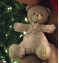 Lost on 09/01/2015 @ Austin, TX Under Seat on #9027 on Greyhound Express. Short hair, light brown. Sits ~a foot tall. Weighs less than a pound. Overall healthy with no distinguishing marks, scars, or tattoos. Well behaved. Wearing small ribbon around neck. Last believed ... Visit: https://whiteboomerang.com/lostteddy/msg/00ffrl (Posted by Michael on 29/01/2015)