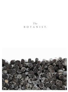 Branding by Ryn Frank