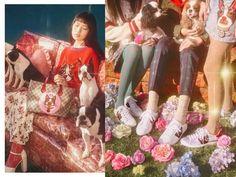 Como adotar o estilo da Gucci no Ano Novo chinês? Simples! Alessandro Michele criou joias, jaquetas, moletons, bolsas... com ilustrações de cachorros!