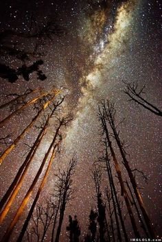 The gorgeous Milky Way!!