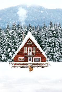 The tiny house movement isn't necessarily about sacrifice. Check out these small house pictures and plans that maximize both function and style! These best tiny homes are just as functional as they are adorable. A Frame Cabin, A Frame House, Winter Cabin, Cozy Cabin, Snow Cabin, Cabin Tent, Winter House, Casa Loft, Cabin In The Woods
