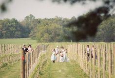 the bride approaches the alter through the vineyard. Eco Friendly, Vineyard, Events, Bride, Green, Wedding, Wedding Bride, Casamento, Bridal