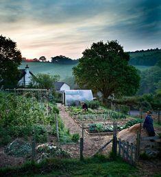 Dream farm/garden/home Potager Garden, Veg Garden, Garden Cottage, Edible Garden, Garden Landscaping, Vegetable Gardening, Fenced Garden, Garden Mesh, Permaculture Garden