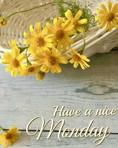 August is coming to an end this week. Monday Morning Greetings, Good Morning Greeting Cards, Happy Monday Morning, Good Morning My Friend, Morning Thoughts, Good Morning Texts, Good Morning Coffee, Good Morning Picture, Good Morning Flowers