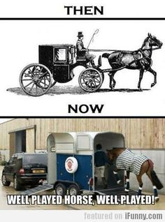 Ha! Smart horses indeed.