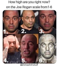 How stoned are you on the Joe Rogan scale? How High Are You, Weed Memes, Joe Rogan, The Joe, Me Me Me Song, Jiu Jitsu, Weight Lifting, Humor, Funny