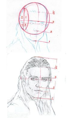 Measures and structure! by AbdonJRomero on DeviantArt Drawing The Human Head, Drawing Heads, Human Figure Drawing, Drawing Art, Anatomy Drawing, Anatomy Art, Drawing Skills, Drawing Techniques, Sketches Tutorial