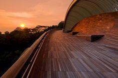 Estetica perfecta al servicio de la cotidianeidad. Puente Henderson Waves en Singapur.