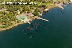 Kalankasvatusta Bröndö, Jurmo
