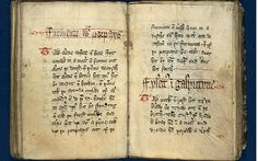 A 14th-century recipe book compiled by King Richard II's master cooks is to put online for the first time to give modern-day chefs an insight into the delicacies of the Middle Ages.
