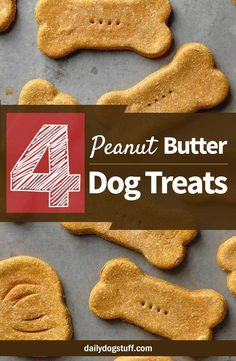Peanut butter homemade dog treats are delicious, but most of them utilize flour. If you're dog is allergic to the ingredient then here's a collection of fun and easy peanut butter dog treat recipes that don't contain any flour. Puppy Treats, Diy Dog Treats, Homemade Dog Treats, Healthy Dog Treats, Homemade Recipe, Peanut Butter Dog Treats, Homemade Peanut Butter, Peanut Butter Dog Biscuits, Dog Biscuit Recipes