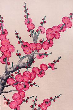 河原崎奨堂 『紅梅』-木版画(額装も可能です) - 京都 木版画の販売 Winds!芸艸堂(うんそうどう)/Ukiyo-e, Woodblock print - Winds! UNSODO