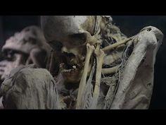 Los guerreros perdidos de Cartago Enigmas y Misterios antigüos