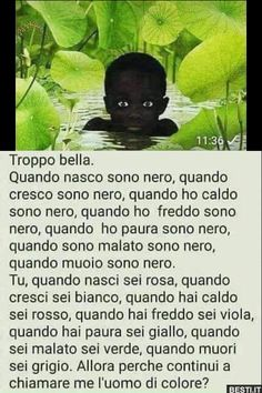 Verona, Funny Phrases, Memories Quotes, Tabu, Girly Quotes, Coincidences, Funny Posts, Funny Images, Words Quotes