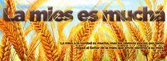 La mies a la verdad es mucha, mas los obreros pocos; por tanto, rogad al Señor de la mies que envíe obreros a su mies. Lucas 10:2.  Portadas para Facebook - Facebook covers