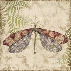 I uploaded new artwork to plout-gallery.artistwebsites.com! - 'Dragonfly Daydreams-D' - http://plout-gallery.artistwebsites.com/featured/dragonfly-daydreams-d-jean-plout.html via @fineartamerica