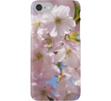 Spring Pink blossom branch iPhone 5 6 7 Case/Skin by #PLdesign #FlowerGift #spring #blossoms
