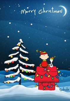 Merry Christmas from Charlie Brown & Snoopy Peanuts Christmas, Merry Christmas Eve, Christmas Art, Merry Christmas Charlie Brown, Funny Christmas, Charlie Brown Christmas Decorations, Grinch Christmas, Christmas Birthday, Christmas Wreaths