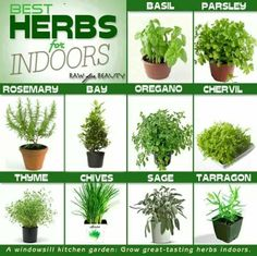 Designing Your Own Vertical Herb Garden Is A Fun Project. Vertical Gardens  Allow You To Grow Herbs And Some Fruits And Vegetables That Do Not Require  A Lot ...