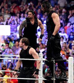 Roman Reigns Memes, Wwe Roman Reigns, Wrestling Superstars, Wrestling Wwe, Divas, Wwe Funny, Wwe Superstar Roman Reigns, The Shield Wwe, Wwe Tna