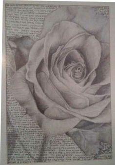 Pencil drawing of a rose Pencil Drawings, Art Drawings, Flower Sketches, Rose Tattoos, Drawing Art, Random Stuff, Dark, Artwork, Flowers