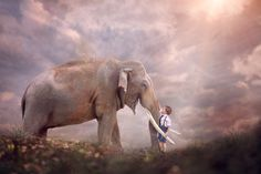 Never lose your sense of wonder - little boy and elephant composite