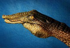 Croc hand art