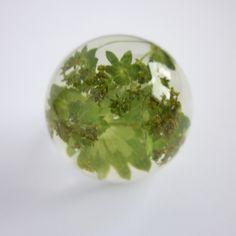 bloomy´s sind kleine, wertvolle Unikate die unter anderem als Schmuckstücke verwendet werden.  Den Pflanzenteilen wird durch ein Konservierungsverfahr