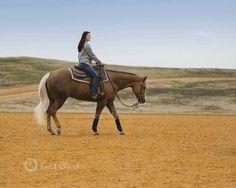 Beautiful Blonde. #horse #equine #showhorse #horseshow #quarterhorse #aqha #horseriding #kurtclark #photography Cowgirl And Horse, Horse Girl, Crazy Horse, Horse Love, Pretty Horses, Beautiful Horses, Horsemanship Patterns, Horse Showing, Western Pleasure Horses