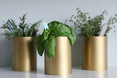IHeart Organizing: DIY Pretty PVC Containers
