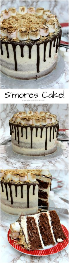S'mores Cake! Chocolate Sponge, Marshmallow Fluff Buttercream Frosting, Toasted Marshmallows and Crushed Biscuits make the ultimate S'mores Cake to end all S'mores. Easy, Delicious, and Sweet…yum!