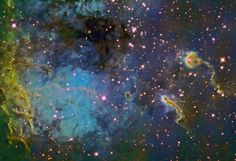 """fyeahastropics:  The Tadpoles of IC 410Credit & Copyright:Ken Crawford(Rancho Del Sol Observatory) Explanation:This close-up viewshows a portion of otherwise faint emission nebula IC 410 in striking false-colors. It also shows two remarkable denizens of the glowing gas cloud at the right - the """"tadpoles"""" of IC 410. The picture is acompositeof images taken through narrow band filters intended totrace atomsin the nebula. Emission from sulfur atoms is shown in red, hydrogen atoms in…"""