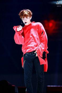 Chanyeol #EXO-L #linh