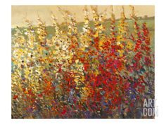 FIELD OF SPRING FLOWERS By Tim O'toole