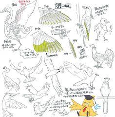 翼の描き方10選【翼の構造、羽の描き方】 - 【講座】 - pixivision(ピクシビジョン)