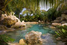 Great lagoon style swimming pool.....