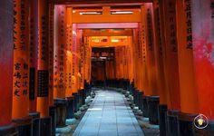 #WhereIsHoboh today? 📍#kyoto #Japan Credit @marcvila11 . . Write on our blog soon online: contact us on Fb ( link in bio!) . . #Hoboh is #TheEasyWayToTravel . . #beautifulkyoto  #instagramjapan #beautifuldestinations #natgeotravel  #welltravelled #topeuropephoto #travellingthroughtheworld #worldplaces #stayandwander #visualoflife #huffpostgram #instaitalia #landscapelovers #bestvacations #exploretocreate #travelphotography #nippon #japanexplorer #temple