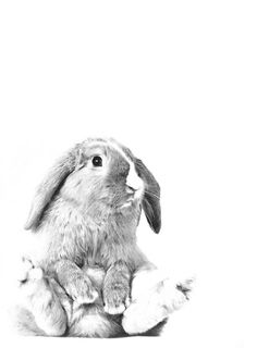 http://generic-art.tumblr.com/image/105869059598