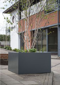 Bracknell Enterprise Centre - Planters for Commercial Office Landscaping and Refurbishment