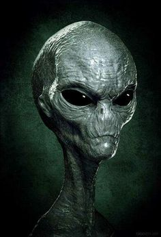 "Gray Alien - ""it"" looks like us after . Gray Alien - it looks like us after . Les Aliens, Aliens And Ufos, Ancient Aliens, Alien Gris, Arte Alien, Coast To Coast Am, Alien Concept Art, Alien Races, Space Aliens"