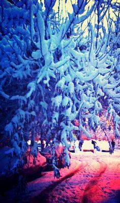 Winter wonderland Winter Wonderland, Finding Yourself, Travel, Painting, Art, Art Background, Viajes, Painting Art, Kunst