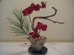 Ikebana Ikebana Flower Arrangement, Ikebana Arrangements, Floral Arrangements, Art Floral, Deco Floral, Floral Design, Japanese Plants, Japanese Flowers, Bonsai