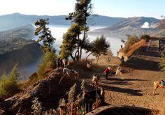 der Abstieg vom Aussichtspunkt im Hintergrund der Vulkan