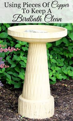 ... Birdbaths on Pinterest | Bird baths, Mosaic birdbath and Diy bird bath