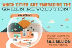 Infographic: Which Cities Are Embracing the Green Revolution