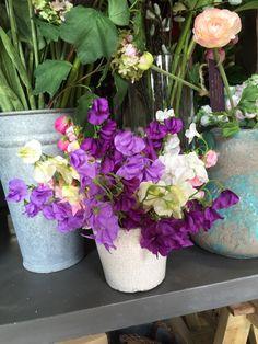 Pretty faux sweet peas Sweet Peas, Faux Flowers, Planter Pots, Seasons, Pretty, Fake Flowers, Seasons Of The Year, Snap Peas, Art Flowers