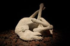 Pompeii Italy Bodies | fascinating pic is segment of Pompeii Animal Bodiesa Day In Pompeii ...