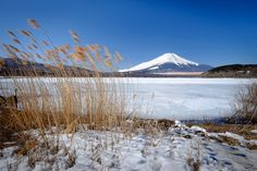 Icy Yamanakako