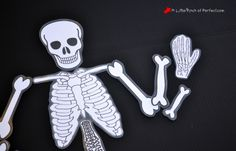 Learning About Bones Activities for Kids and Free Skeleton Printable -