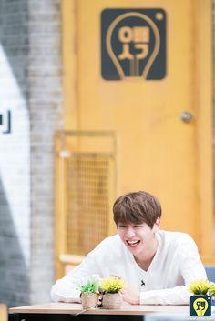 Wanna One on 오빠생각 (Oppa Thinking) Jinyoung, Kpop, Bae, Daniel K, Guan Lin, When You Smile, Produce 101 Season 2, Fandom, Ha Sungwoon